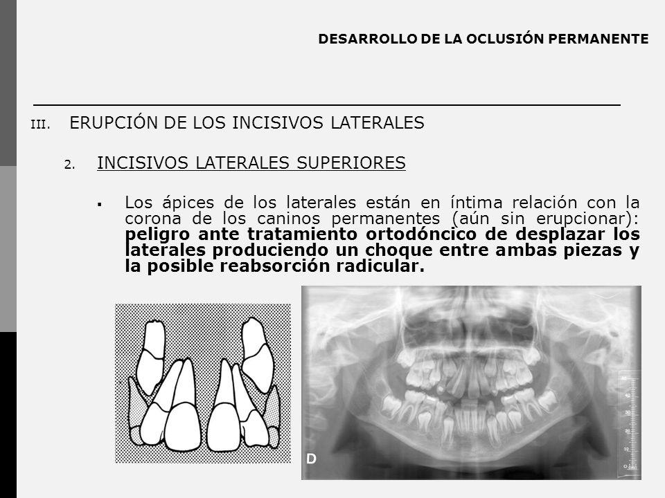 DESARROLLO DE LA OCLUSIÓN PERMANENTE III. ERUPCIÓN DE LOS INCISIVOS LATERALES 2. INCISIVOS LATERALES SUPERIORES Los ápices de los laterales están en í