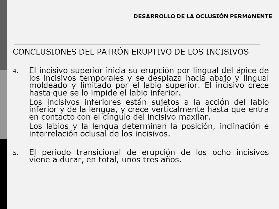 DESARROLLO DE LA OCLUSIÓN PERMANENTE CONCLUSIONES DEL PATRÓN ERUPTIVO DE LOS INCISIVOS 4. El incisivo superior inicia su erupción por lingual del ápic