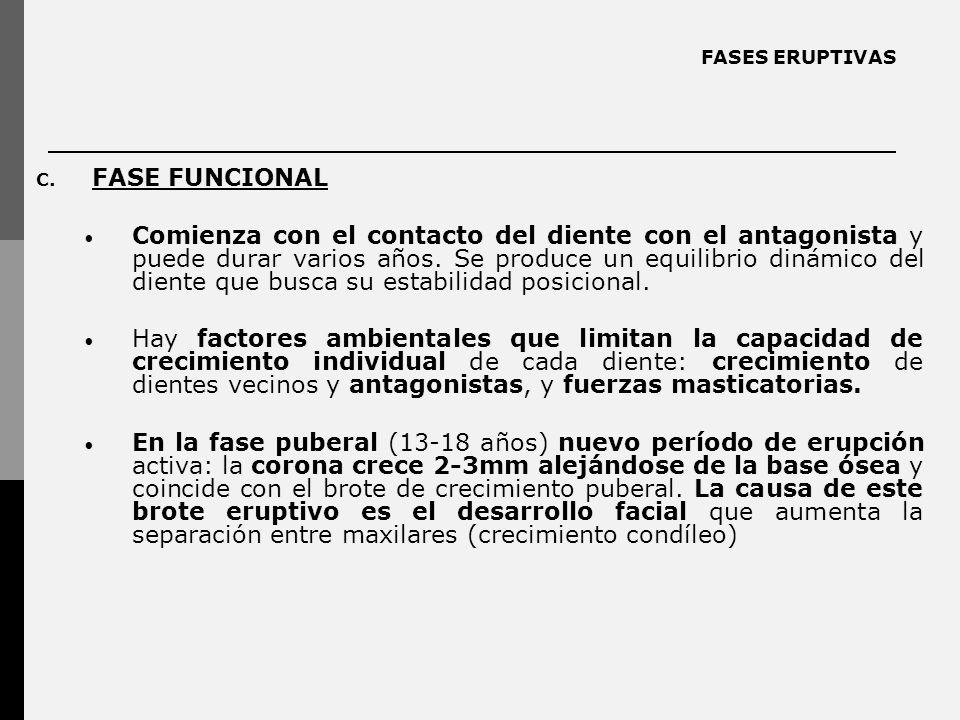 FASES ERUPTIVAS C.
