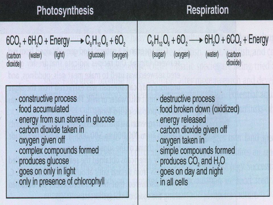 4) CO 2.- El CO2 es importante para la fotosíntesis y puede presentarse como un limitante en estos sistemas acuáticos, si este no se presenta libre.