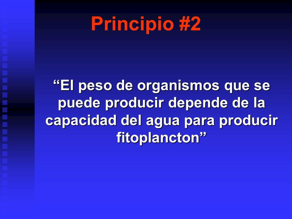 La ley de Liebigs del MINIMO: La ley de Liebigs del MINIMO: Ley de Shelford de la TOLERANCIA: Ley de Shelford de la TOLERANCIA: Principio #2 El peso de organismos que se puede producir depende de la capacidad del agua para producir fitoplancton