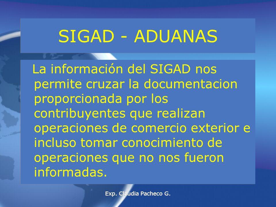 REGIMENES DE PERFECCIONAMIENTO ACTIVO Exp. Claudia Pacheco G.