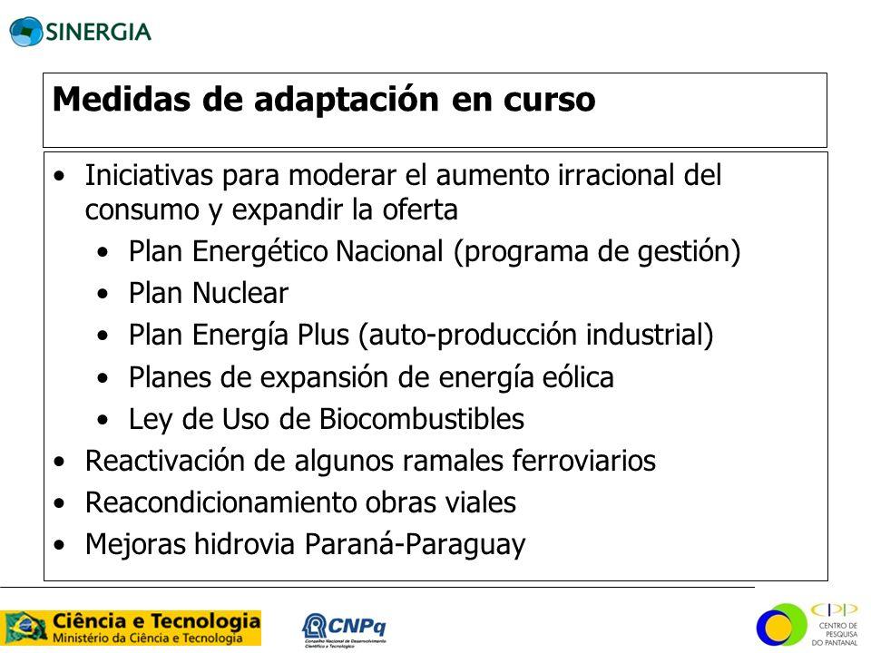 Medidas de adaptación en curso Iniciativas para moderar el aumento irracional del consumo y expandir la oferta Plan Energético Nacional (programa de g