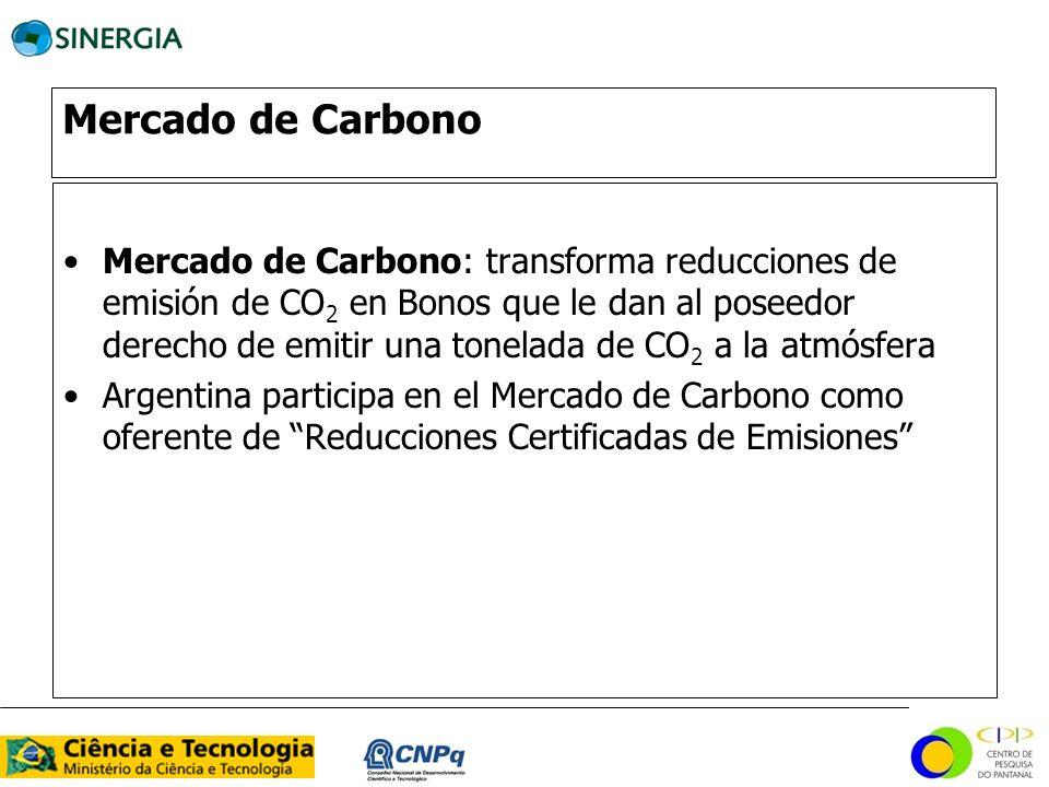 Mercado de Carbono Mercado de Carbono: transforma reducciones de emisión de CO 2 en Bonos que le dan al poseedor derecho de emitir una tonelada de CO