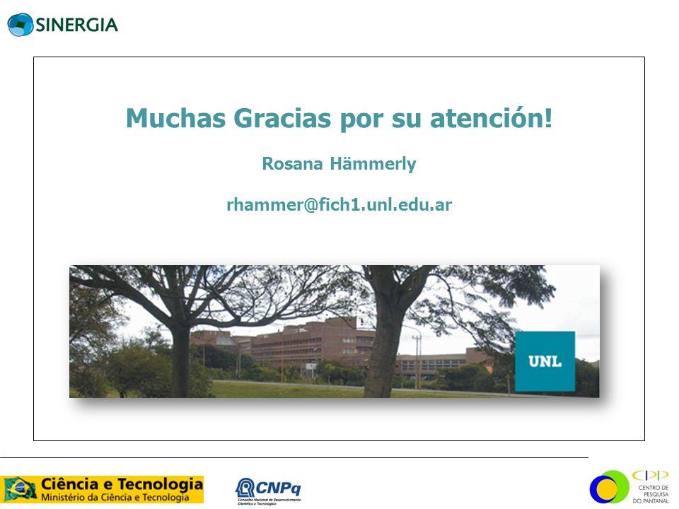Muchas Gracias por su atención! Rosana Hämmerly rhammer@fich1.unl.edu.ar