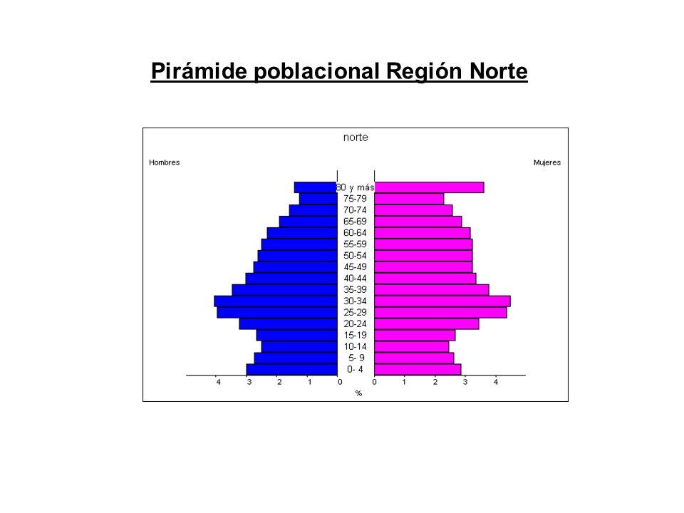 Pirámide poblacional Región Norte