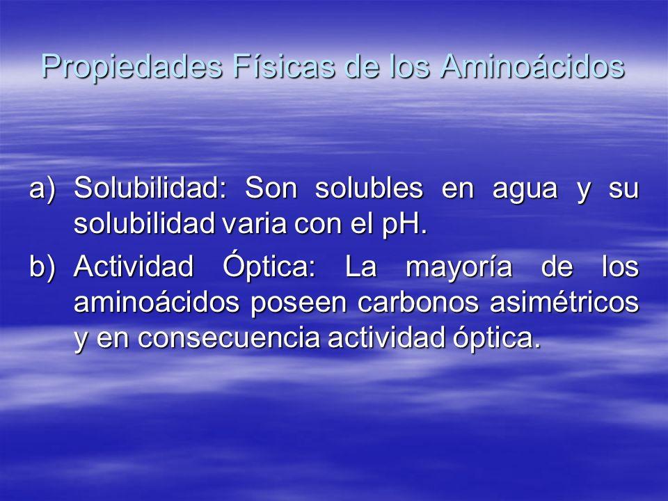 Propiedades Físicas de los Aminoácidos a)Solubilidad: Son solubles en agua y su solubilidad varia con el pH. b)Actividad Óptica: La mayoría de los ami
