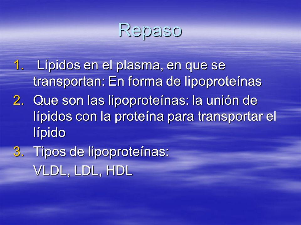 Repaso 1. Lípidos en el plasma, en que se transportan: En forma de lipoproteínas 2.Que son las lipoproteínas: la unión de lípidos con la proteína para