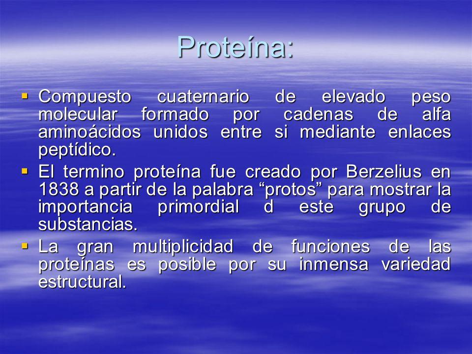 Proteína: Compuesto cuaternario de elevado peso molecular formado por cadenas de alfa aminoácidos unidos entre si mediante enlaces peptídico. Compuest