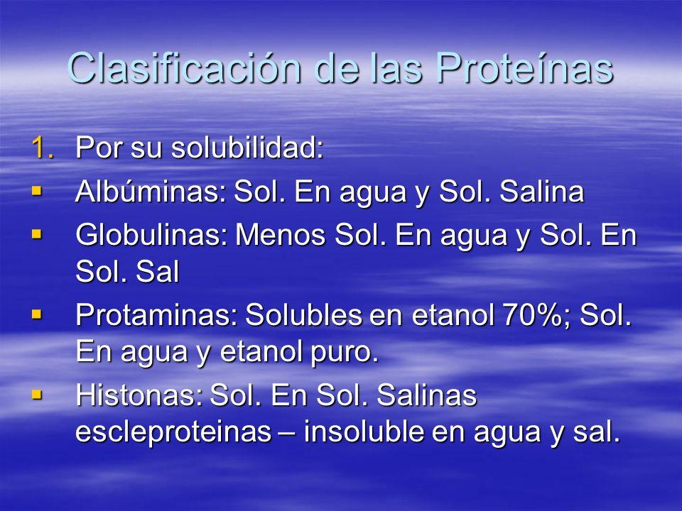 Clasificación de las Proteínas 1.Por su solubilidad: Albúminas: Sol. En agua y Sol. Salina Albúminas: Sol. En agua y Sol. Salina Globulinas: Menos Sol
