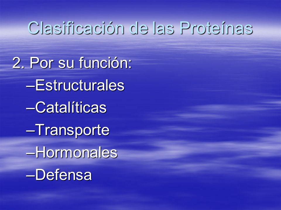Clasificación de las Proteínas 2. Por su función: –Estructurales –Catalíticas –Transporte –Hormonales –Defensa