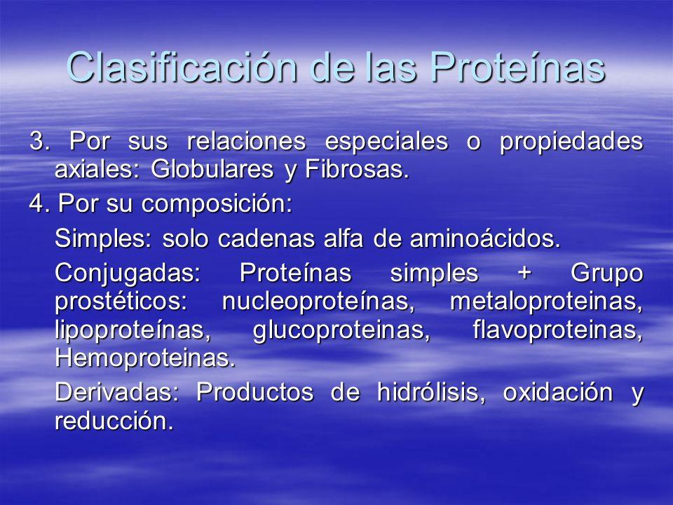 Clasificación de las Proteínas 3. Por sus relaciones especiales o propiedades axiales: Globulares y Fibrosas. 4. Por su composición: Simples: solo cad