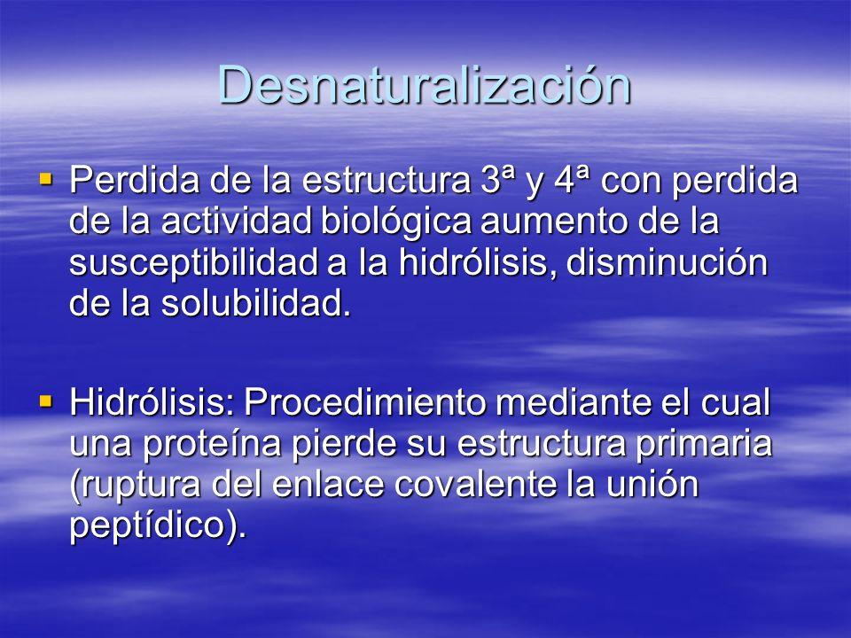 Desnaturalización Perdida de la estructura 3ª y 4ª con perdida de la actividad biológica aumento de la susceptibilidad a la hidrólisis, disminución de