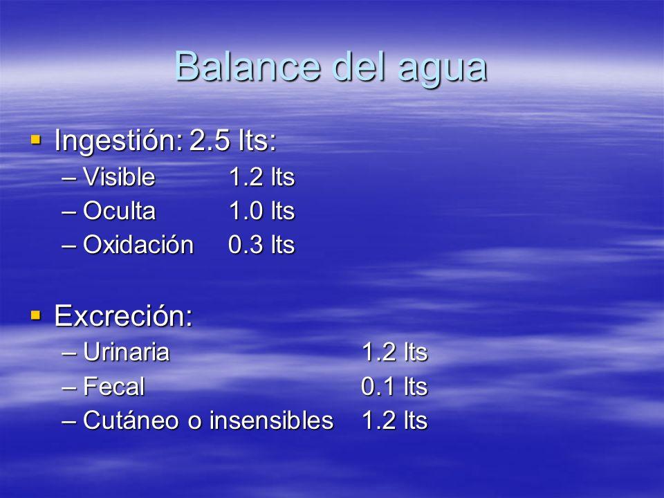 Balance del agua Ingestión: 2.5 lts: Ingestión: 2.5 lts: –Visible 1.2 lts –Oculta 1.0 lts –Oxidación 0.3 lts Excreción: Excreción: –Urinaria 1.2 lts –
