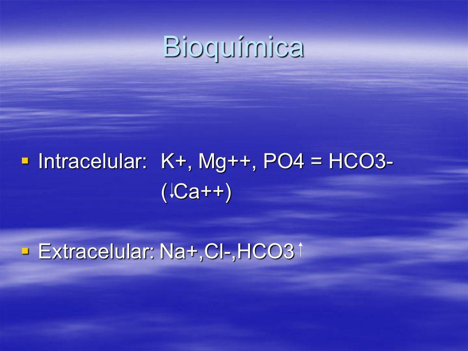 Bioquímica Intracelular: K+, Mg++, PO4 = HCO3- Intracelular: K+, Mg++, PO4 = HCO3- ( Ca++) Extracelular: Na+,Cl-,HCO3 Extracelular: Na+,Cl-,HCO3