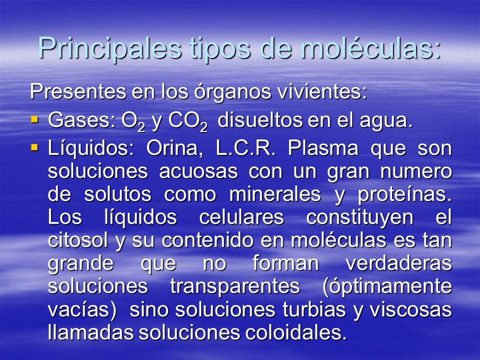 Principales tipos de moléculas: Presentes en los órganos vivientes: Gases: O 2 y CO 2 disueltos en el agua. Gases: O 2 y CO 2 disueltos en el agua. Lí