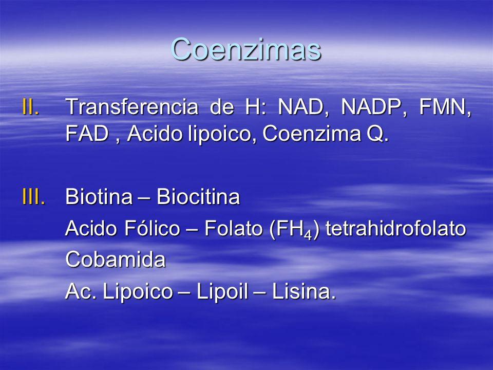 Coenzimas II.Transferencia de H: NAD, NADP, FMN, FAD, Acido lipoico, Coenzima Q. III.Biotina – Biocitina Acido Fólico – Folato (FH 4 ) tetrahidrofolat