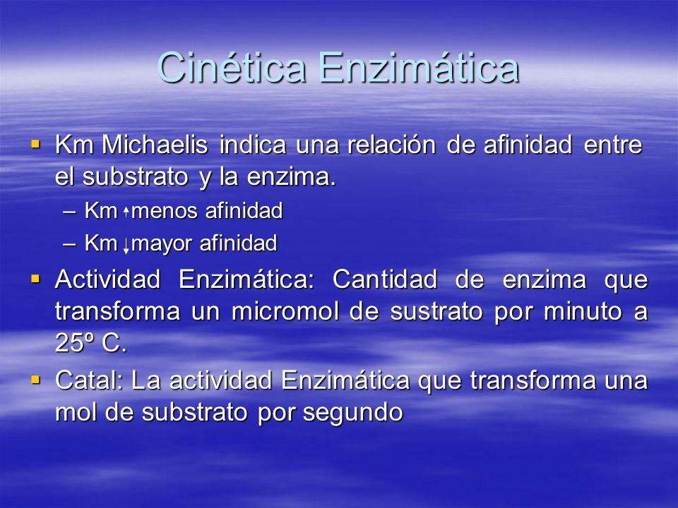 Cinética Enzimática Km Michaelis indica una relación de afinidad entre el substrato y la enzima. Km Michaelis indica una relación de afinidad entre el