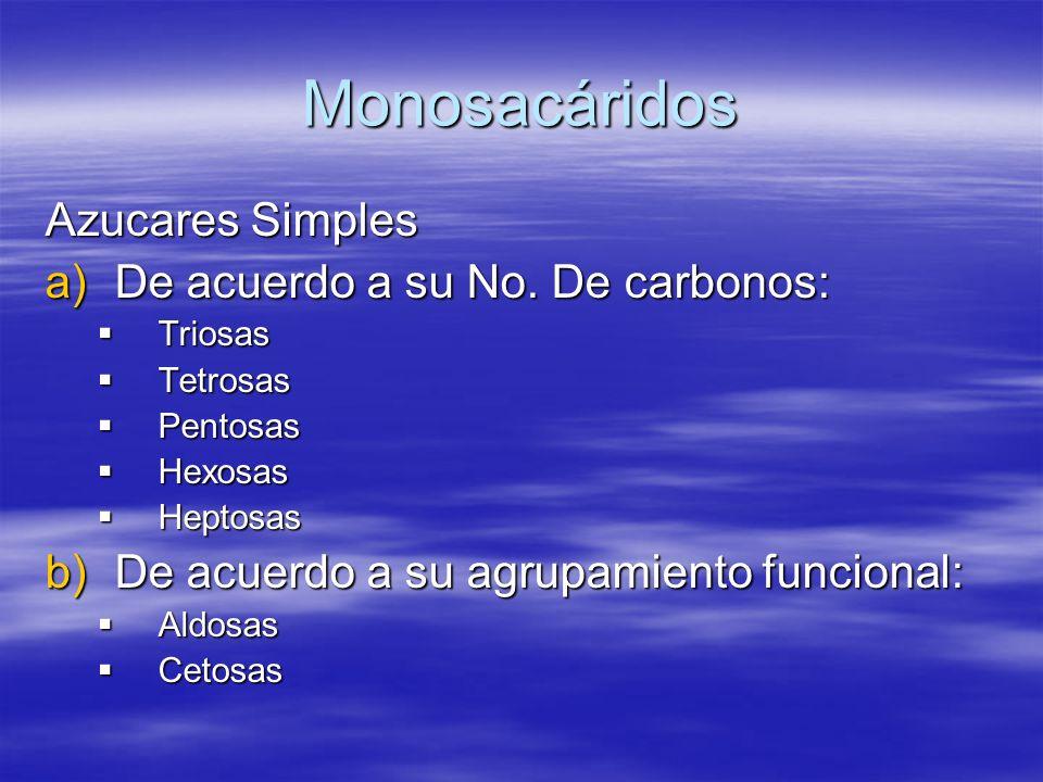 Monosacáridos Azucares Simples a)De acuerdo a su No. De carbonos: Triosas Triosas Tetrosas Tetrosas Pentosas Pentosas Hexosas Hexosas Heptosas Heptosa