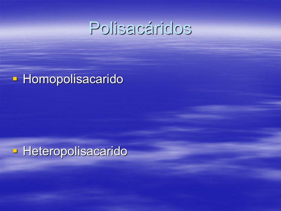 Polisacáridos Homopolisacarido Homopolisacarido Heteropolisacarido Heteropolisacarido