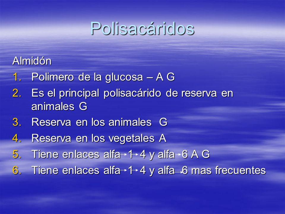 Polisacáridos Almidón 1.Polimero de la glucosa – A G 2.Es el principal polisacárido de reserva en animales G 3.Reserva en los animales G 4.Reserva en