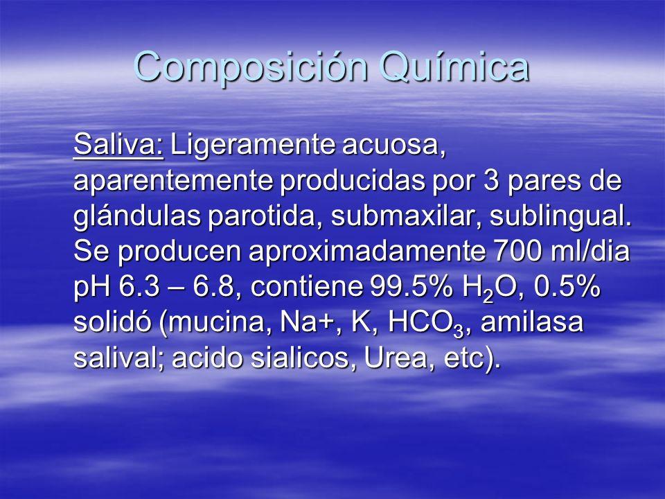 Composición Química Saliva: Ligeramente acuosa, aparentemente producidas por 3 pares de glándulas parotida, submaxilar, sublingual. Se producen aproxi