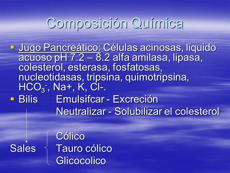 Composición Química Jugo Pancreático: Células acinosas, liquido acuoso pH 7.2 – 8.2 alfa amilasa, lipasa, colesterol, esterasa, fosfatosas, nucleotida
