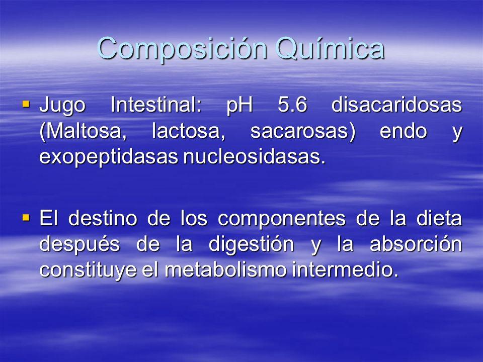 Composición Química Jugo Intestinal: pH 5.6 disacaridosas (Maltosa, lactosa, sacarosas) endo y exopeptidasas nucleosidasas. Jugo Intestinal: pH 5.6 di