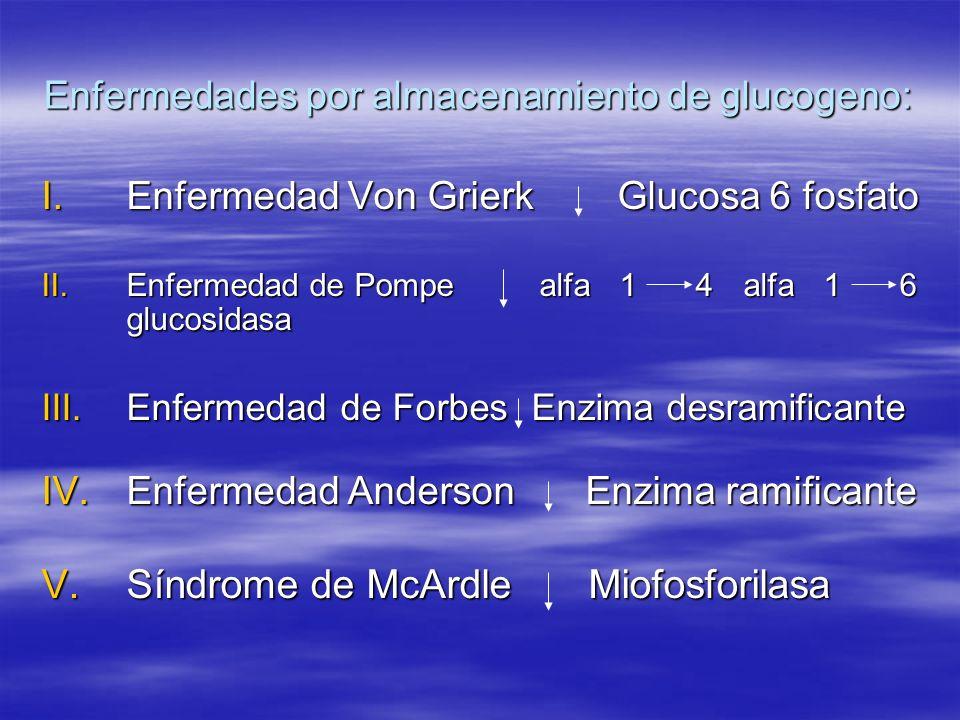 Enfermedades por almacenamiento de glucogeno: I.Enfermedad Von GrierkGlucosa 6 fosfato II.Enfermedad de Pompe alfa 1 4 alfa 1 6 glucosidasa III.Enferm