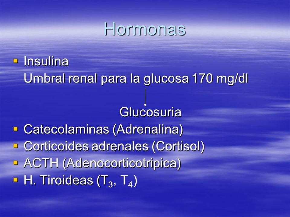 Hormonas Insulina Insulina Umbral renal para la glucosa 170 mg/dl Glucosuria Catecolaminas (Adrenalina) Catecolaminas (Adrenalina) Corticoides adrenal