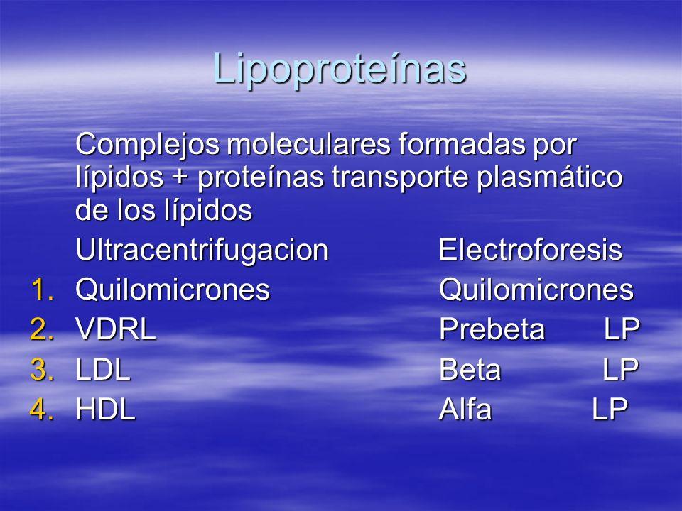 Lipoproteínas Complejos moleculares formadas por lípidos + proteínas transporte plasmático de los lípidos Ultracentrifugacion Electroforesis 1.Quilomi