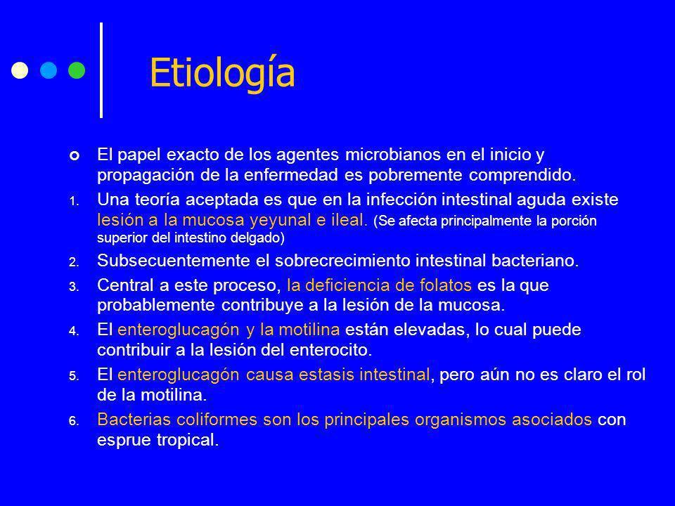 Etiología El papel exacto de los agentes microbianos en el inicio y propagación de la enfermedad es pobremente comprendido. 1. Una teoría aceptada es