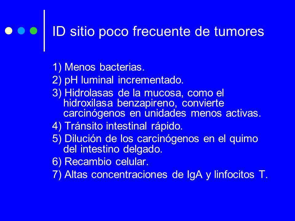 ID sitio poco frecuente de tumores 1) Menos bacterias. 2) pH luminal incrementado. 3) Hidrolasas de la mucosa, como el hidroxilasa benzapireno, convie
