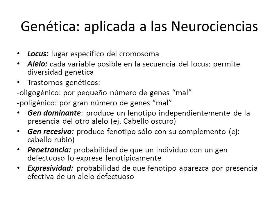 Genética: aplicada a las Neurociencias Locus: lugar específico del cromosoma Alelo: cada variable posible en la secuencia del locus: permite diversida