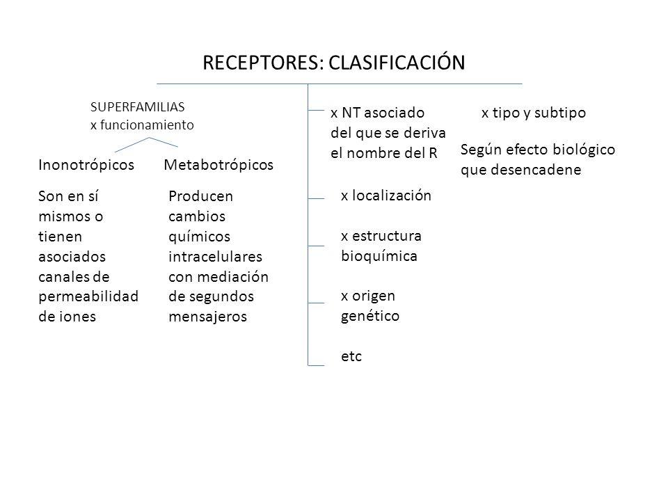 RECEPTORES: CLASIFICACIÓN x tipo y subtipo Según efecto biológico que desencadene Son en sí mismos o tienen asociados canales de permeabilidad de ione