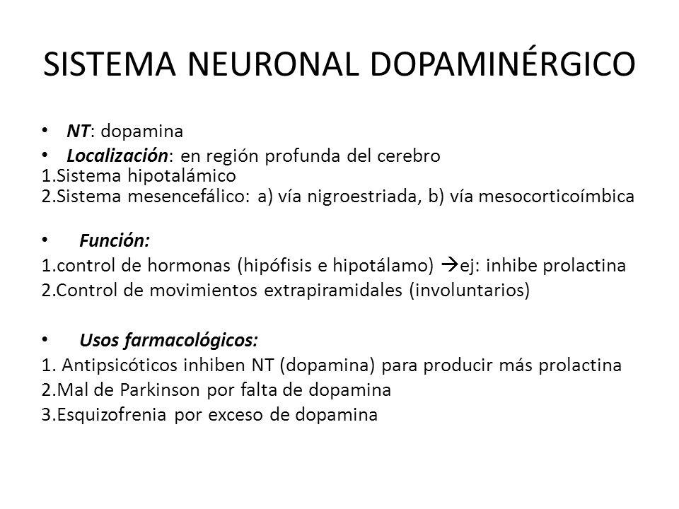 SISTEMA NEURONAL DOPAMINÉRGICO NT: dopamina Localización: en región profunda del cerebro 1.Sistema hipotalámico 2.Sistema mesencefálico: a) vía nigroe