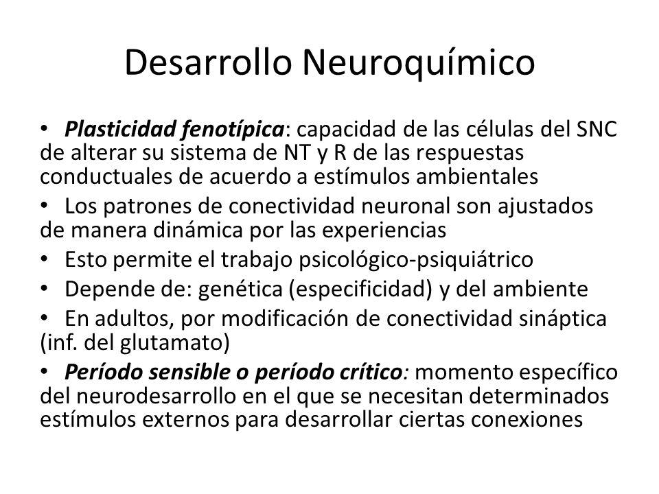 Desarrollo Neuroquímico Plasticidad fenotípica: capacidad de las células del SNC de alterar su sistema de NT y R de las respuestas conductuales de acu