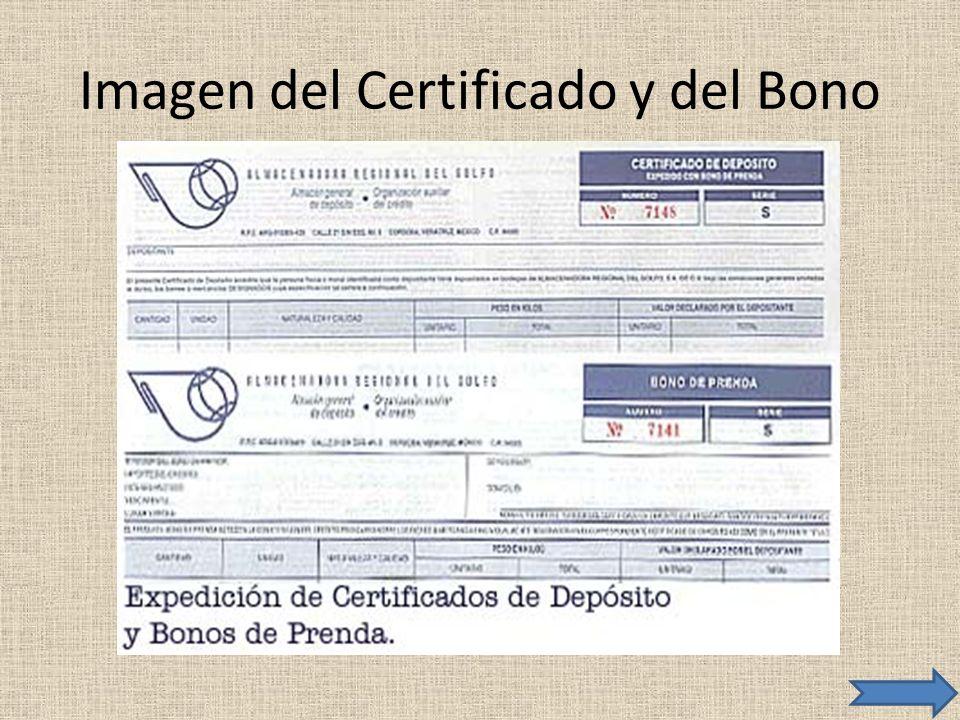 Imagen del Certificado y del Bono