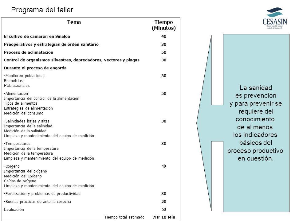 TemaTiempo (Minutos) El cultivo de camarón en Sinaloa40 Preoperativos y estrategias de orden sanitario30 Proceso de aclimatación50 Control de organism