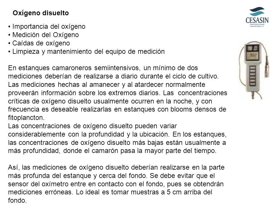 Importancia del oxígeno Medición del Oxígeno Caídas de oxígeno Limpieza y mantenimiento del equipo de medición En estanques camaroneros semiintensivos