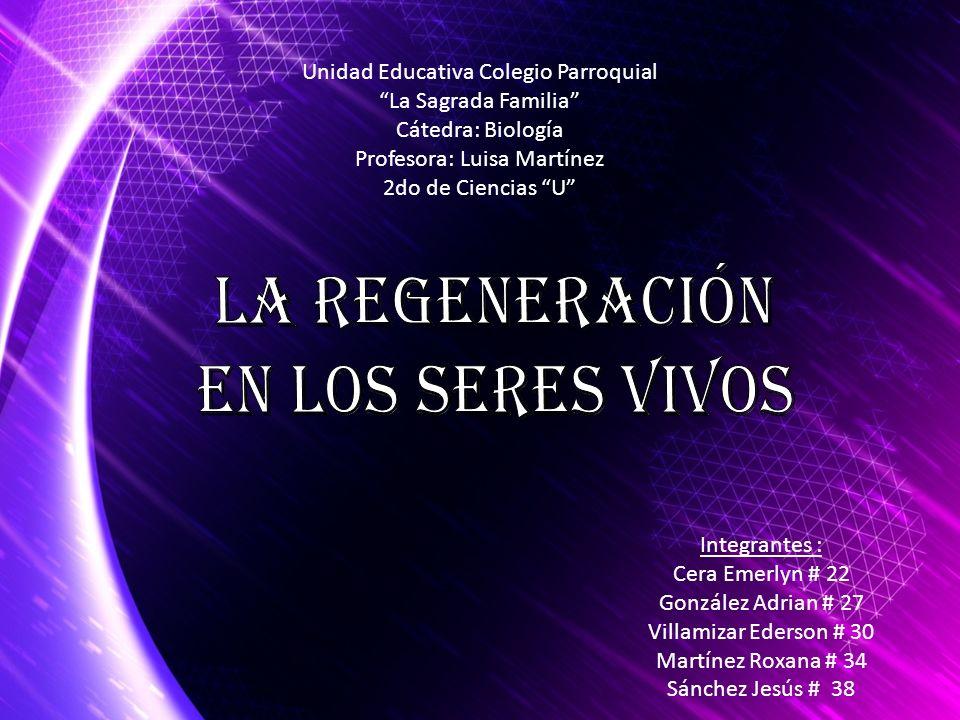 Integrantes : Cera Emerlyn # 22 González Adrian # 27 Villamizar Ederson # 30 Martínez Roxana # 34 Sánchez Jesús # 38 Unidad Educativa Colegio Parroqui