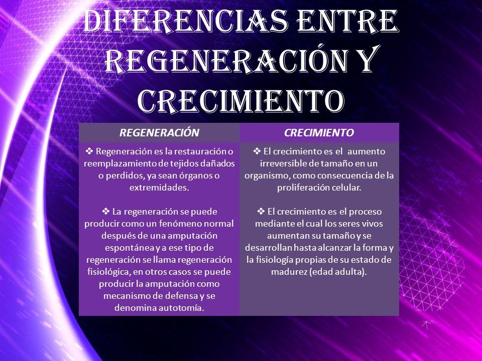Diferencias entre Regeneración y Crecimiento REGENERACIÓNCRECIMIENTO Regeneración es la restauración o reemplazamiento de tejidos dañados o perdidos,