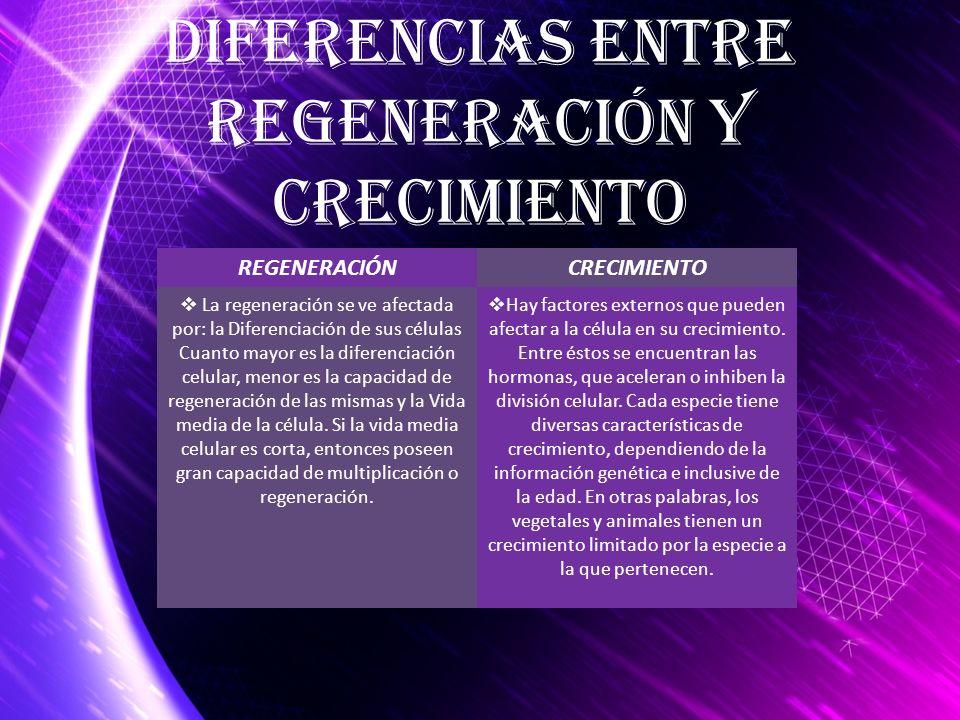 REGENERACIÓNCRECIMIENTO La regeneración se ve afectada por: la Diferenciación de sus células Cuanto mayor es la diferenciación celular, menor es la ca