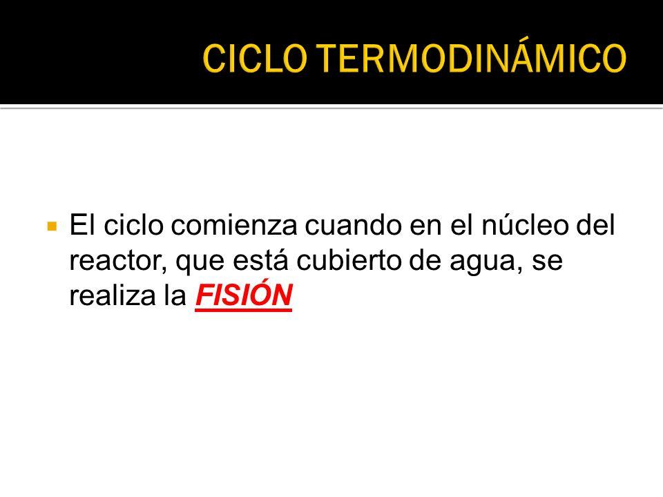 El ciclo comienza cuando en el núcleo del reactor, que está cubierto de agua, se realiza la FISIÓN