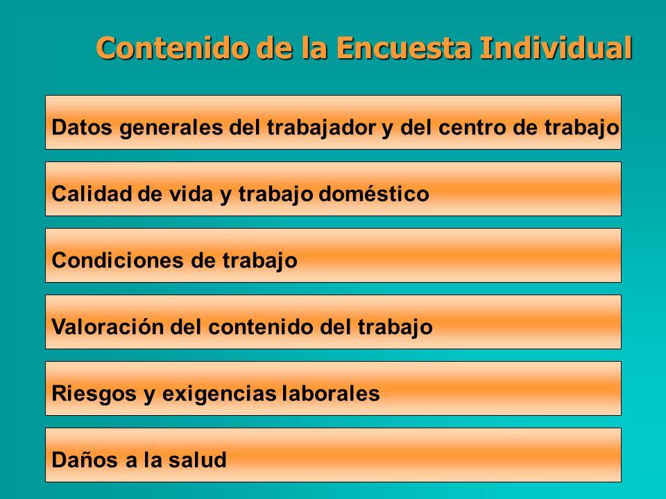 Contenido de la Encuesta Individual Datos generales del trabajador y del centro de trabajo Calidad de vida y trabajo doméstico Condiciones de trabajo