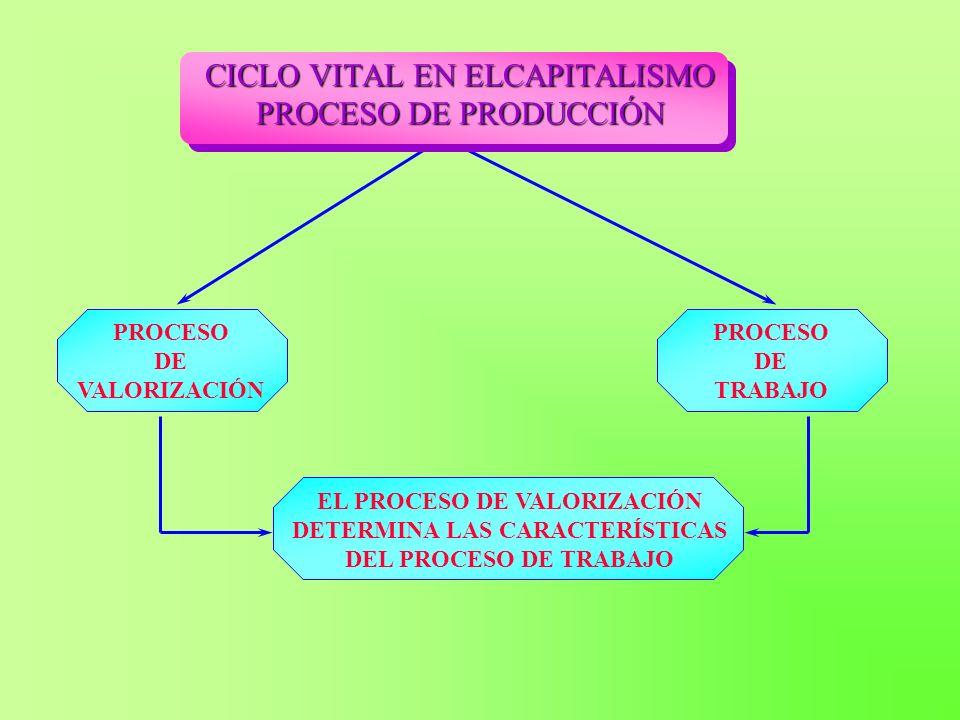 CICLO VITAL EN ELCAPITALISMO PROCESO DE PRODUCCIÓN PROCESO DE VALORIZACIÓN PROCESO DE TRABAJO EL PROCESO DE VALORIZACIÓN DETERMINA LAS CARACTERÍSTICAS