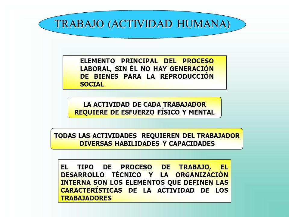 TRABAJO (ACTIVIDAD HUMANA) LA ACTIVIDAD DE CADA TRABAJADOR REQUIERE DE ESFUERZO FÍSICO Y MENTAL TODAS LAS ACTIVIDADES REQUIEREN DEL TRABAJADOR DIVERSA
