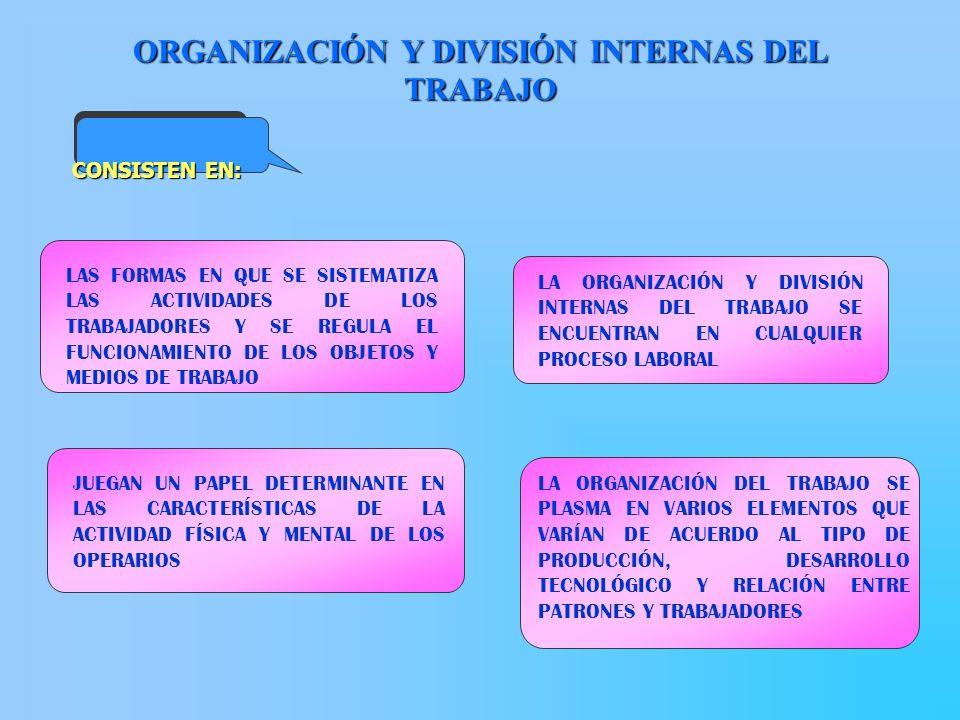 ORGANIZACIÓN Y DIVISIÓN INTERNAS DEL TRABAJO LAS FORMAS EN QUE SE SISTEMATIZA LAS ACTIVIDADES DE LOS TRABAJADORES Y SE REGULA EL FUNCIONAMIENTO DE LOS