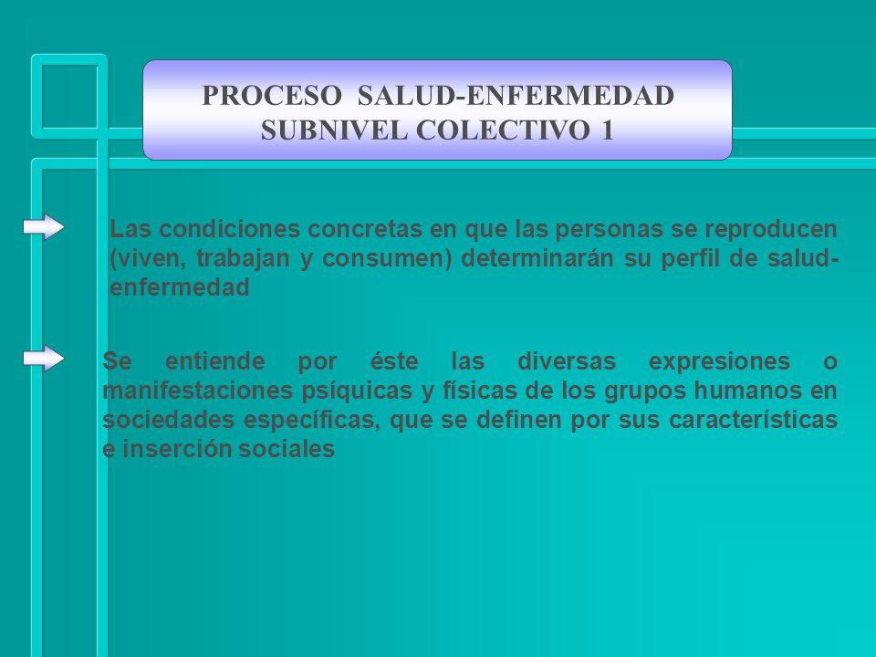 PROCESO SALUD-ENFERMEDAD SUBNIVEL COLECTIVO 1 Se entiende por éste las diversas expresiones o manifestaciones psíquicas y físicas de los grupos humano