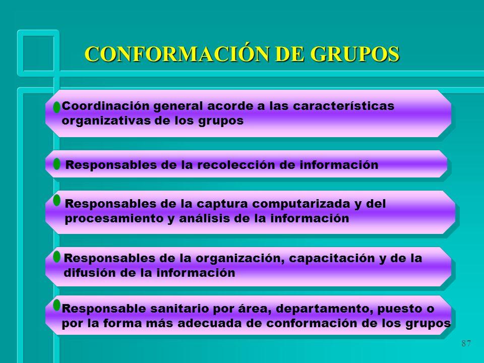 87 Coordinación general acorde a las características organizativas de los grupos Responsables de la recolección de información Responsables de la capt